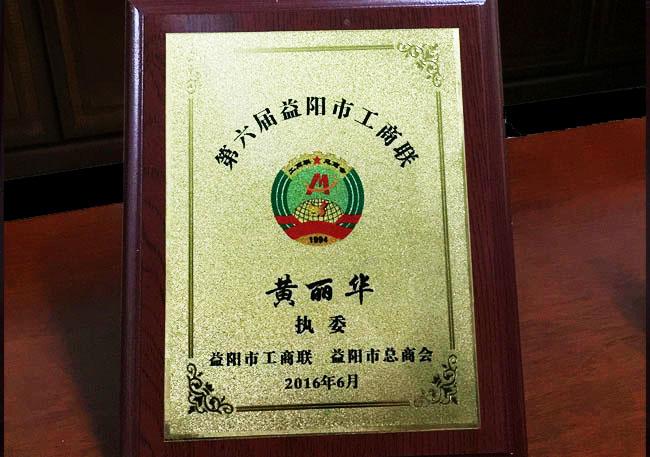 亚搏网安卓版下载工商联执委